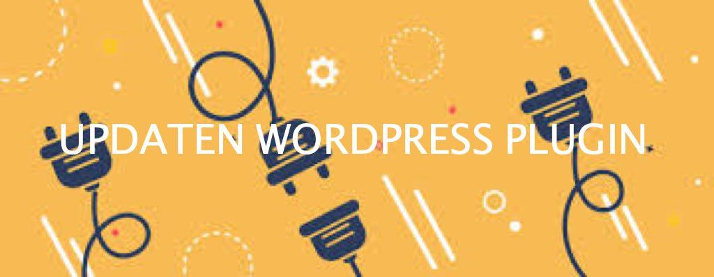 Wordpress plugin updaten voor een veilige werkende website